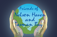 Friends of the Nelson Haven, Nelson NZ